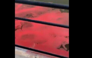 Море на украинском курорте внезапно стало розовым: в чем причина