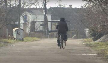 """""""Не допомагають ні клітки, ні ланцюги"""": жорстокий хижак тримає в страху українське село, відео"""