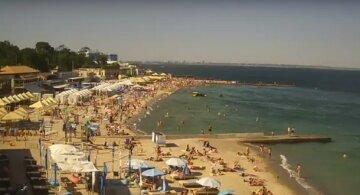 Величезний монстр атакував натовп на пляжі, реакція людей вражає: моторошні кадри