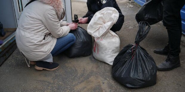 """""""Завязали в пакет"""": в Одессе на помойке нашли девять щенков, фото"""