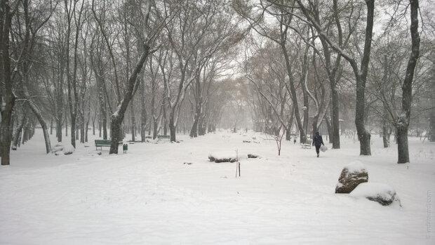 одесский парк