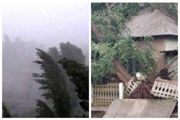 Ураган обрушился на Одесскую область, вырвал деревья с корнями и сорвал крыши: кадры непогоды
