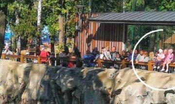 У зоопарку чоловік посадив дітей на огорожу вольєра з ведмедем: моторошне фото