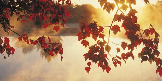 Осеннее равноденствие: дата и время (фото)
