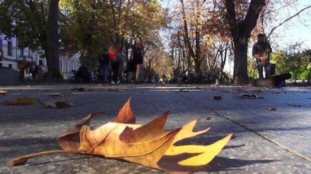 В Одессе  пришел май в середине осени: кадры аномалии