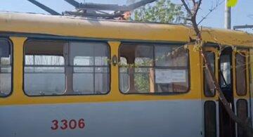 Трамвай загорелся в Одессе, водитель залез на дерево: видео ЧП