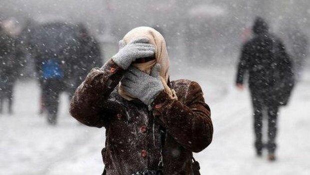 сніг зима погода вітер