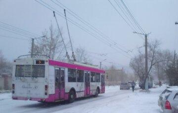 """""""Добиралась пешком в 20-градусный мороз"""": кондуктор отказала девочке в проезде, детали ничтожного поступка"""