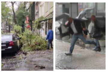 Одесу накрило негодою, потужний вітер валить дерева: відео того, що відбувається