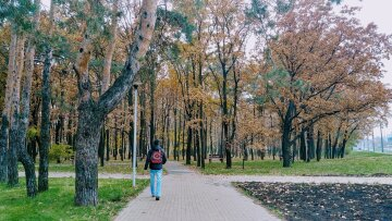 погода осень парк