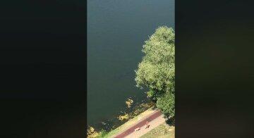 """У Києві зняли рибу людського зросту: """"Ось чому тонуть люди в цьому озері"""""""