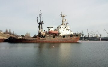 Екологічна катастрофа в Чорному морі: Адміністрація морських портів приховала правду від Держекоінспекції