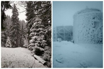 Лютий мороз зі снігом нагрянули в Карпати, все кругом білим біло: барвисті фото зимових гір