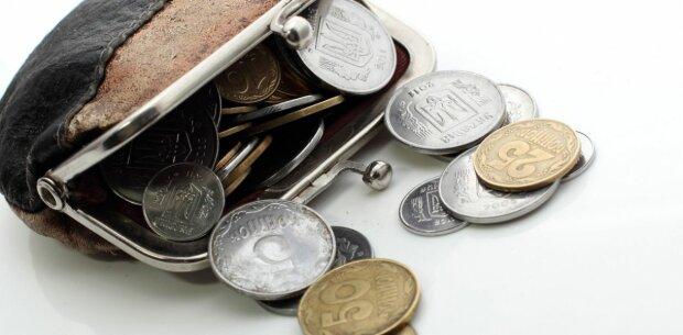 кошелек деньги мелочь копейки