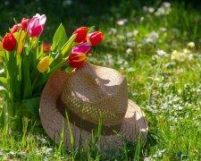 лето весна