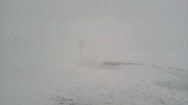Все в тумані і снігу: стихія відігралася на Україні за день до літа, кадри негоди