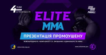 В Украине создан официальный промоушен по смешанным единоборствам ММА