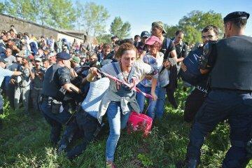 мигранты беженцы