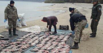 Госэкоинспекция поймала браконьеров в заказнике на Черкасщине: нанесен ущерб в 155 тысяч гривен