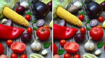 Тест на внимательность: на каждой картинке можно найти по несколько отличий