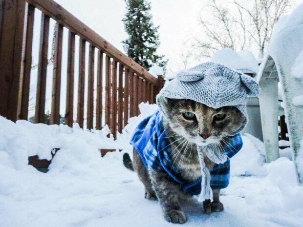 Погода «заморозит» украинцев: появился прогноз на выходные