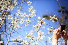 погода, апрель