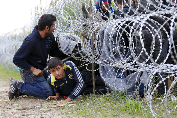 мигранты нелегалы беженцы венгрия