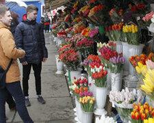8 марта, цветы