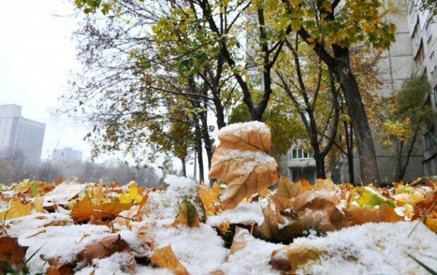 осень,погода,