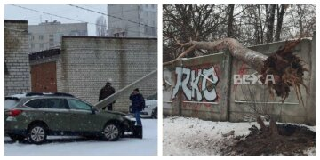 """""""Вырвало с корнем"""": шквальный ветер наделал беды на Харьковщине, фото разрушений"""