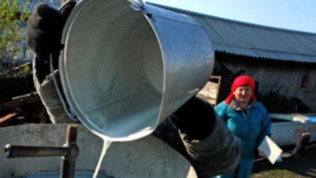 """""""Будем выливать молоко в канализацию"""": украинские фермеры оказались на грани из-за карантина"""