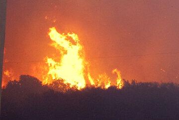 Туристов в Хорватии и Черногории накрыла огненная стихия: новое ужасающее видео