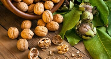 walnuts-benefits-superfood-660×350