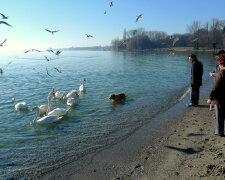 весна погода озеро прогулка