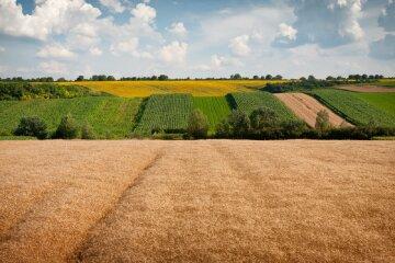 Аренда земли в Украине