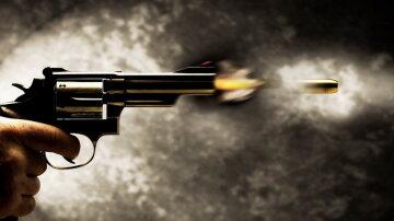 пистолет, убийство, выстрел, покушение