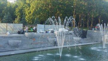 сад Шевченко, вазы