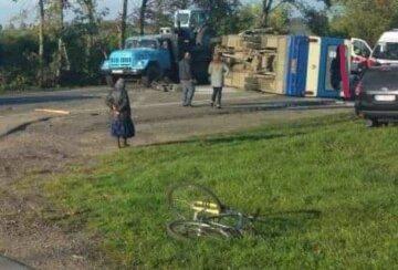 Автобус не розминувся з легковиком, багато постраждалих: кадри великої ДТП на Львівщині