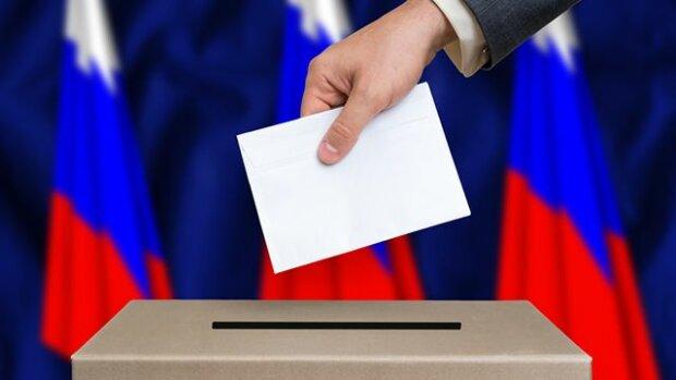 выбор в РФ