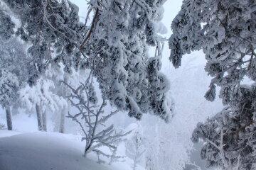 зима, снег, погода в Украине