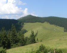 гора Яворник