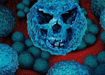 микробы, бактерии