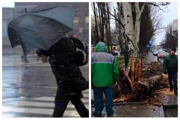 Негода накоїла бід в Одесі, повалені дерева і паралізовано рух транспорту: кадри НП