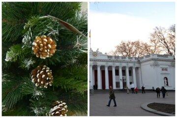 """""""Лучше ведьмовской шляпы"""": в Одессе установили елку с нестандартной верхушкой, фото"""