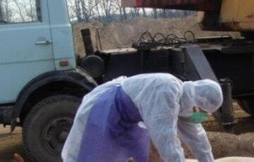 У Київській та ще трьох областях зафіксували спалах нової небезпечної хвороби: що відомо