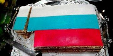 Чиновники з'їли торт у вигляді прапора, що призначався сиротам (відео)