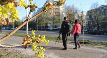 погода весна апрель люди