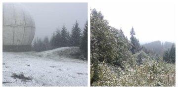 Зима внезапно обрушилась на украинскую землю: кадры первого снега
