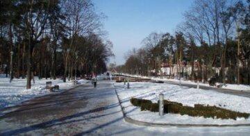 Вандалы уничтожили красоту популярного место отдыха киевлян:  фото последствий