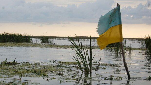 катастрофа, болото, крым, флаг
